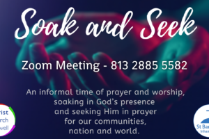Details of Soak and Seek sessions